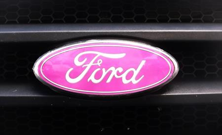 """Auto Wrap Vinyl Oval Decal Overlay fits Ford Emblems F150 Ranger Edge 8.25"""" #24600232"""